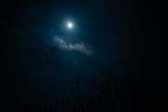 DSCF4024-2.jpg (madaday) Tags: nightsky lunareclipse space sky night moon stars filters edited