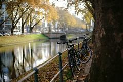 last autumn day 5@KÖ, Düsseldorf, Germany (Amselchen) Tags: canonef50mmf14usm sonyilce7rm2 sony canon bokeh blur dof depthoffield trees water reflection season autumn fall bike bicycle city cityscope bridge