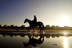 DSC09244 (ZANDVOORTfoto.nl) Tags: horse horses paarden paard zonsopkomst sunrise sunset beach zee zandvoort netherlands nederland kust zon sun