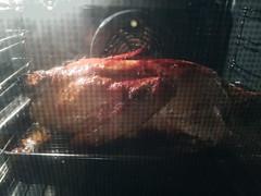 duck (tmdittrich) Tags: ente mahlzeit lecker