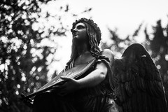 Ruhe in Frieden (petdek) Tags: friedhof statue bokeh monochrome