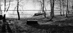 Lonely mans bench (Foide) Tags: pinholecamera realitysosubtle 6x12 f200