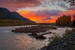 washed up kayak (rdpe50) Tags: landscape sunset forest river kayak logs brush vedderriver chilliwack bc