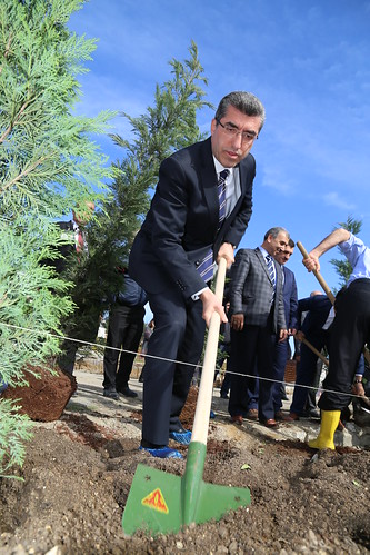 Prof. Dr. M. İhsan Karaman_imü