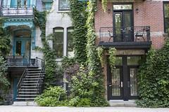 Maison du Plateau Mont-Royal de Montréal (MarieDeschene11) Tags: mtl montréal canada québec ville city stairs escaliers plateau montroyal rue street été summer
