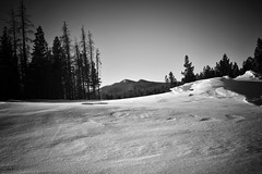 Mountains & Snow Drifts (Never Exceed Speed) Tags: colorado blackandwhite landscape snowdrift rooseveltnationalforest snow forest trees mountains scenery redfeatherlakes