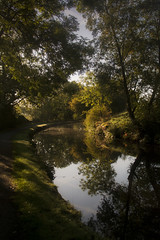 Along the Canal (Adventures with a Camera) Tags: landscape naturephotography nikonphotography nikon5200 canal derbyshire autumn autumncolours