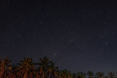 Few stars (feisas) Tags: indonesia java banten sawarna ocean camping night stars bright dream palms light campfire fire fullframe longexposure travel adventure color outdoor outside nature landscape bagus malam bintang sonya7