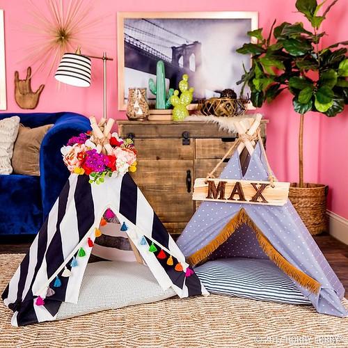 Diy Crafts : Create a mini-tent for your four-legged companion!