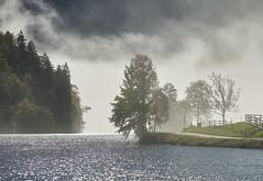 Herbstnebel (Ernst_P.) Tags: schönauamkönigssee bayern deutschland deu 135mm f20 königssee samyang walimex nebel see wasser otoño fog niebla lago lake autumn fall