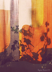 Orange Silhouettes (Tanjica Perovic) Tags: curtain silhouettes plant flowers geranium shadows backlight abstract botanical midcenturydesign leaves textile fabric texture sunlight