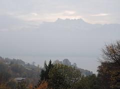 DSCN8097 (keepps) Tags: switzerland suisse schweiz vaud brent fall autumn landscape fog