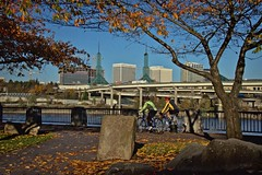 Waterfront and Convention Center Towers 11 8 2018 (rbdal (Rick Dalrymple)) Tags: japaneseamericanhistoricalplaza waterfront tommccallwaterfrontpark bicycles cyclists oregonconventioncenter twintowers november fall fallcolor autumn autumncolor autumnleaves portland multnomahcounty oregon d7000 nikon