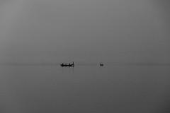 Fishing (David AB Silva) Tags: fishermen fisherman boat water grey black reflection sky net fishing aveiro