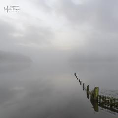 Frosty Fenceline. (miketonge) Tags: fence posts mist lake fog mere water shore lakedistrict lakedistrictnationalpark cumbria keswick derwentwater crowpark nikon d750 2470