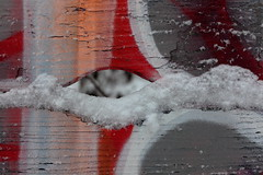 providence and cognition (bkellerstrass) Tags: abstract wood painted painting snow winter eye outdoor