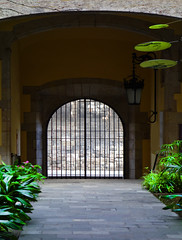 Courtyard (chrisk8800) Tags: architecture plants courtyard doorway gate bars barcelona