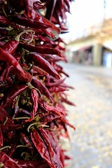Some like it hot (halifaxlight) Tags: hungary szentendre peppers driedpeppers display street buildings cobblestones food spices redpeppers bokeh