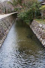 SDQ_1240 (koyaman3422) Tags: 京都 kyoto sigma sdquattro 1770mm 哲学の道
