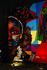 Miami - Art Basel - 2018 - Wynwood (xtaros) Tags: miami art basel 2018 wynwood kobra xtaros night lowlight noflash florida streetart wall