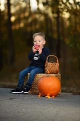 (Zsolt Remenyi Photography) Tags: octabox 120cm ad600b godox fotóműhely reményi f28 vrii 70200mm d750 nikon offcamea flash strobist outdoor autumn photos