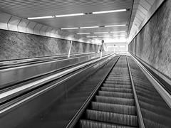 Upwards Geometry (Torsten Reimer) Tags: lines deutschland europa tunnel germany munich bayern escalators lights münchen man upwards underground monochrome geometric theresienwiese brick subway bavaria europe schwarzweis blackandwhite rolltreppe ubahn de