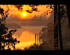 wake up (Gordon Hunter) Tags: summer sun sunrise morning am warm glow orange yellow water reflection trees forest leaves fog mist steam cloud nature natural outside outdoors rural country nanaimo river estuary vancouverisland bc canada gordon hunter nikon d5000 fall autumn october ocean cove