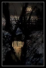 The creek (patrick.verstappen) Tags: strem creek water gold photo picassa pinterest pat patrickverstappen nikon d5100 sigma summer texture textured twitter textuur trees yahoo ipernity ipiccy imagine gingelom google molenbeek belgium belgie textura xxx soft snow december winter sun