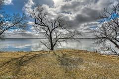 Overholser Ice (Gary P Kurns Photography) Tags: myoklahoma onone nikon nikonz7 oklahoma lakeoverholster oklahomacity places 1424lens