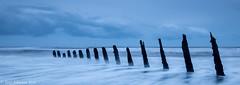 Walney Island Groynes #6703 (tony johnston Images) Tags: barrowinfurness bluehour fujitx2 landscapephotography longexposure other places sea seascape seaside southwalney tide tonyjohnston walney walneyisland waves winter groynes furness peninsula