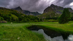 Little lakes near Nusfjord (Norway) (christian.rey) Tags: nusfjord nordland norvège no lofoten islands lakes lacs see mountains montagnes paysage landscape sony alpha a7r2 a7rii 1635 green cloudy