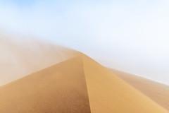 _RJS4530 (rjsnyc2) Tags: 2019 africa d850 desert dunes landscape namibia nikon outdoors photography remoteyear richardsilver richardsilverphoto safari sand sanddune travel travelphotographer animal camping nature tent trees wildlife