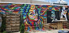 Gaia by FindizzCreate (wiredforlego) Tags: graffiti mural streetart urbanart aerosolart publicart bushwick brooklyn newyork nyc findizzcreate isabelleewing
