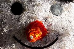 The Face Of The Snowman (MarkusR.) Tags: d722749 mrieder markusrieder stuttgart germany wilhelma zoologischergarten zoo park botanischergarten zoologicalgarden botanicalgarden nikon d7200 nikond7200 face gesicht snowman schneemann weihnachten christmas