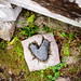 Heart-shaped rock, The Scilly Isles, UK
