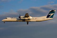 C-GPWE (WestJet - Encore) (Steelhead 2010) Tags: yyz creg westjet encore bombardier dhc8 dhc8q400 cgpwe
