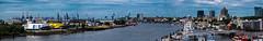 Steinwerder und Landungsbrücken (Art de Lux) Tags: hamburg steinwerder landungsbrücken musical theater hafen harbor kräne cranes elbe wasser water schiffe ships stadt city farbe color artdelux deutschland germany panorama microfourthirds mft harbour