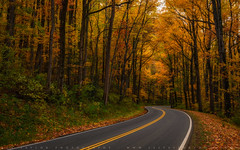 Winding Autumn Path In The Smoky Mountains (lestaylorphoto) Tags: america usa tennessee greatsmokymountains smokymountains nationalpark travel nature road path highway winding drive autumn falls foliage leaves longexposure nikon z7 leslietaylor lestaylor lestaylorphoto