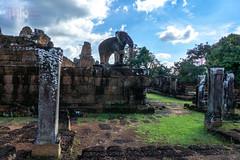 The Elephant in the Temple (shapeshift) Tags: ancient angkor angkorwat architecture asia cambodia columns davidpham davidphamsf eastmebon elephant hindu khmer khmerempire reservoir ruins sculpture shapeshift siemreap southeastasia temple towers travel