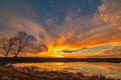 A November Sunset (gary_photog) Tags: nikond850 zeiss zeissmlvus 2818milvus sunset lake sky clouds manualfocus primelens milvus2818 carlzeiss