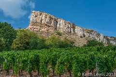 Solutre and Vines (keithhull) Tags: solutre maconnais escarpment limestone prehistory rock vineyards france soaneetloire 2018 landscape explore