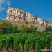 Solutre and Vines (keithhull) Tags: solutre maconnais escarpment limestone prehistory rock vineyards france soaneetloire 2018 landscape explore