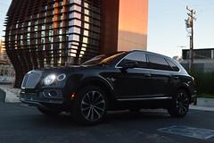 Bentley Bentayga Los Angeles California (Exotic & Luxury Cars) Tags: bentleybentayga losangelesexoticcarrental 777exotics 2900srobertsonblvd 777exoticscom redleather luxurycar bentleysuv