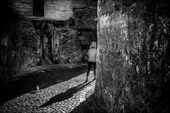 La passante et le pigeon... / The walking girl and the pigeon... (vedebe) Tags: ville city rue street humain human femme oiseaux pigeon ombres soleil mur noiretblanc netb nb bw monochrome