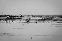 IMG_2476 (fatimatujjohora) Tags: monochrome blackandwhite boat boatman