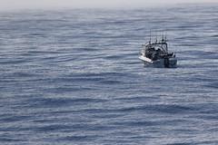 Eagle Eye (blachswan) Tags: portfairy portfairypelagic pelagicboattrip pelagics southernocean southernexplorer continentalshelf ocean eagleeye boat anglers