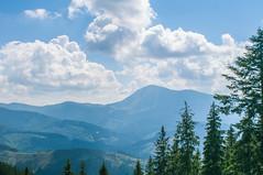 Trip to Mount Kukul-August-2018-21 (pavlo.malyshchak) Tags: travel mountains carpathians ukraine family summer vacation forest