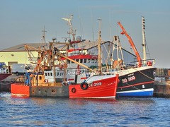 Greencastle, Co. Donegal. (willieguildea) Tags: boat boats fishingboats trawlers greencastle donegal ireland eire ulster harbour port quay nikon p900 coolpix sky vessel water so500 ce208
