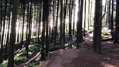 Alex and Nick - Haldon Woods - Nov 2018 (Peter J Dean) Tags: bike haldon exeter mtb alex nick sport jump air