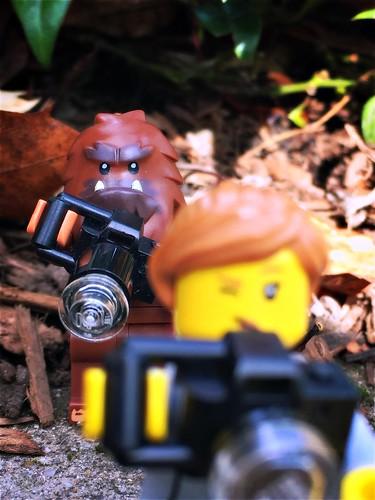 Bigfoot photography...